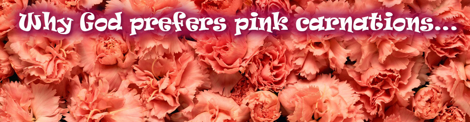 Why God Prefers Pink Carnations