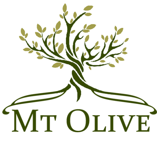mount olive single parents Mt olive pickle company, inc, located at the corner of cucumber & vine in mount olive, north carolina, was originally founded for the purpose of.