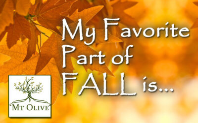 My Favorite Part of the Fall Season is…