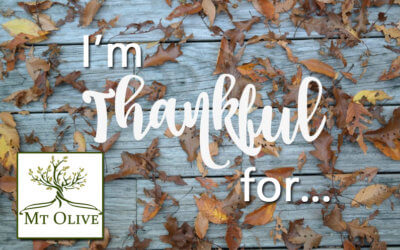 I'm Thankful for…