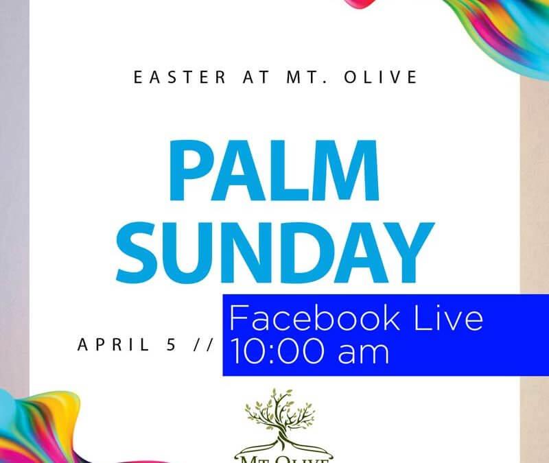 Palm Sunday – Facebook Live – 4-5-2020