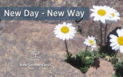 New Day – New Way