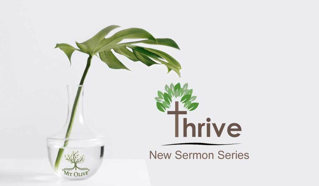 New Sermon Series – Thrive